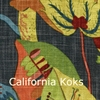 California-09-Koks021