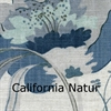 California-12-Natur020